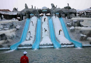 Ice-Land-Water-Park